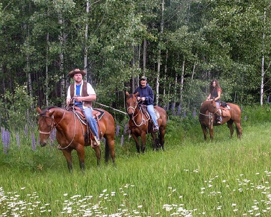 Mountain Springs Lodge Sleigh Rides: getlstd_property_photo