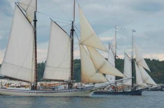 Harbour Towne Inn on the Waterfront: Come enjoy Windjammer Days or go on a Windjammer Cruise.