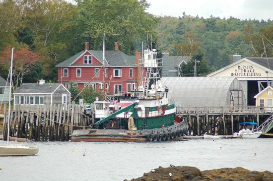 Harbour Towne Inn on the Waterfront: Enjoying the different harbors.