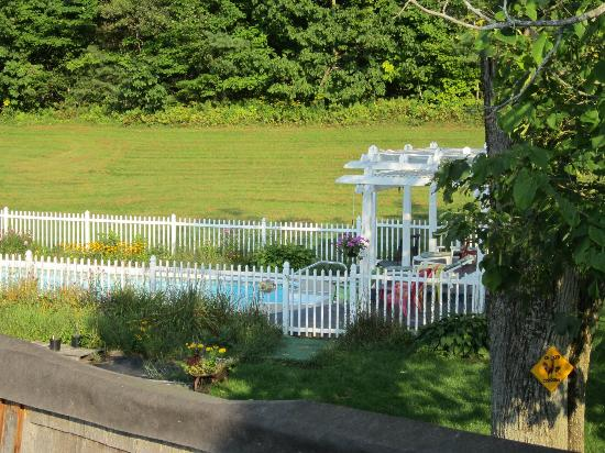 Blueberry Farm Bed & Breakfast: View of the pool