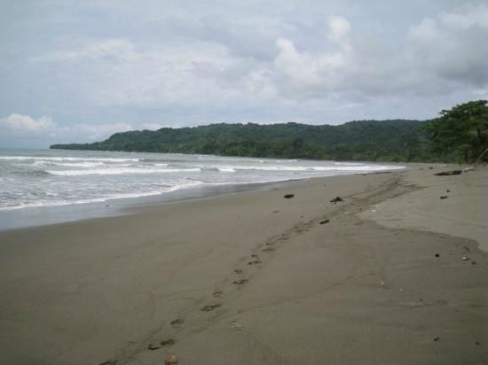 Boca Sombrero: Uncrowded beach