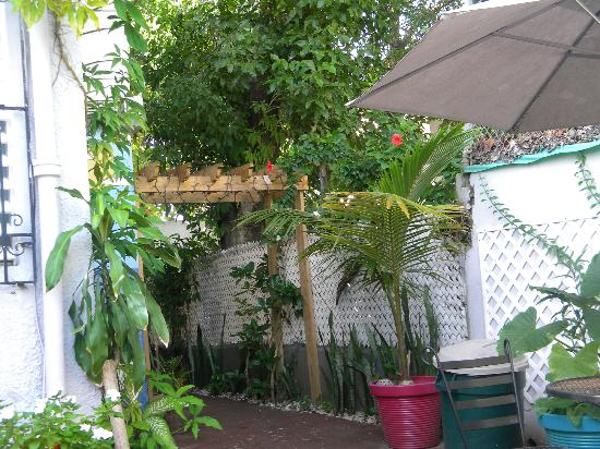 Coqui del Mar Guest House: Court Yard