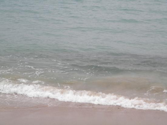 Coqui del Mar Guest House: Ocean Front