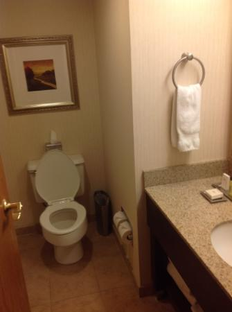 Hilton Lexington Suites: Bathroom