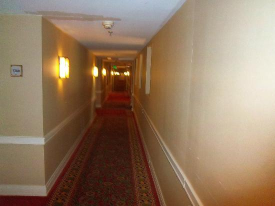 Princeton Marriott at Forrestal: Long sprawling hallways