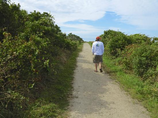Sachuest Point National Wildlife Refuge: Ocean View Trail