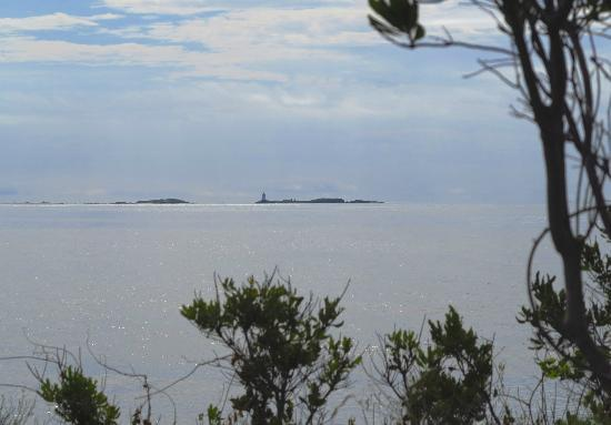 Sachuest Point National Wildlife Refuge: Lighthouse view from the trail