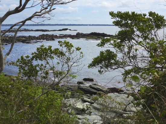 Sachuest Point National Wildlife Refuge: Scenic Ocean View Trail