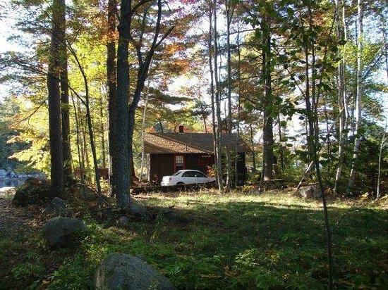 Leen's Lodge: cabin