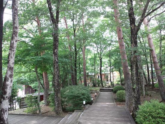 Hotel Forest Hills Nasu: 3