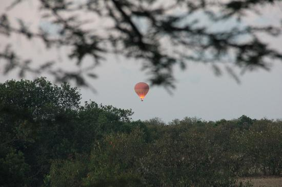 Kichakani Mara Camp: Hot air Balloon going up as seen from my tent