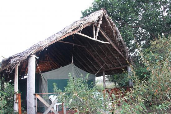 Kichakani Mara Camp: My tent at Kichakani