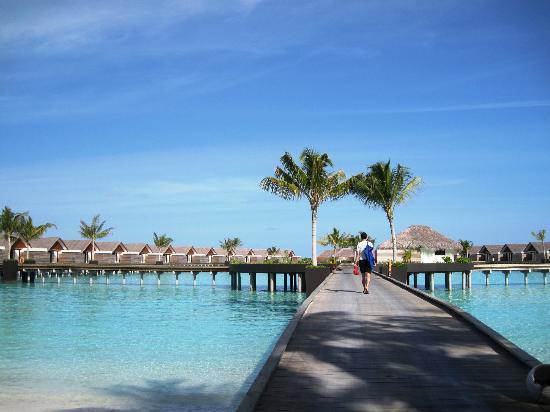Niyama Private Islands Maldives : The water villas