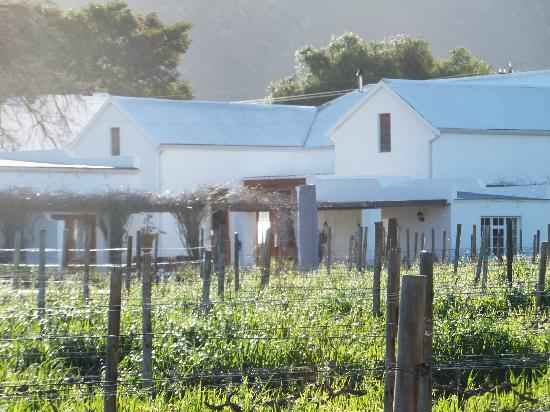 Vineyard Country House: View of the Property from the vineyard