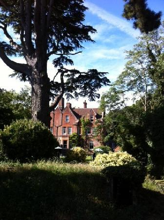 Ebury Hotel and Serviced Apartments: House from back of garden