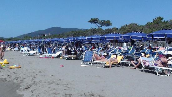 Roccamare Resort: Gli ombrelloni