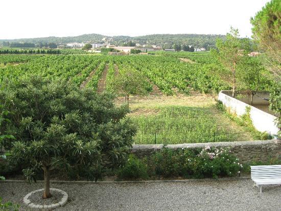 Le Mas des Vignes : uitzicht kamer verdieping