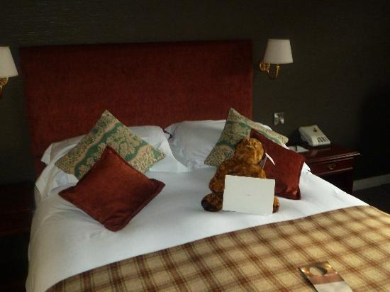 The Black Swan Hotel: Hugo the teddy there to greet you