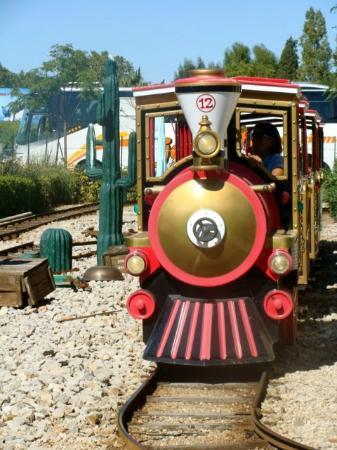 La Ferme du Far West : Train des plaines
