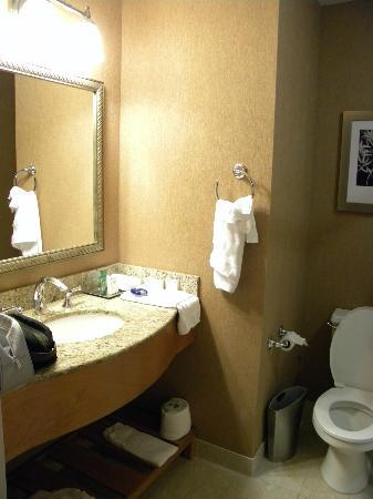 Hilton Boston Downtown / Faneuil Hall: BAgno