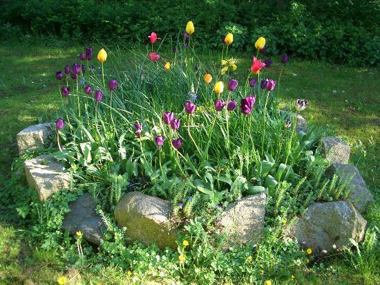 Landgasthof Rentoft Krug: Sonnige und schattige Plätzchen findet der Besucher im Garten.