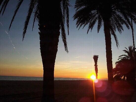 Hotel Salome : y junto a la playa