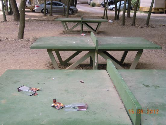 ping pong  Picture of Camping Sunelia Le Bois Fleuri