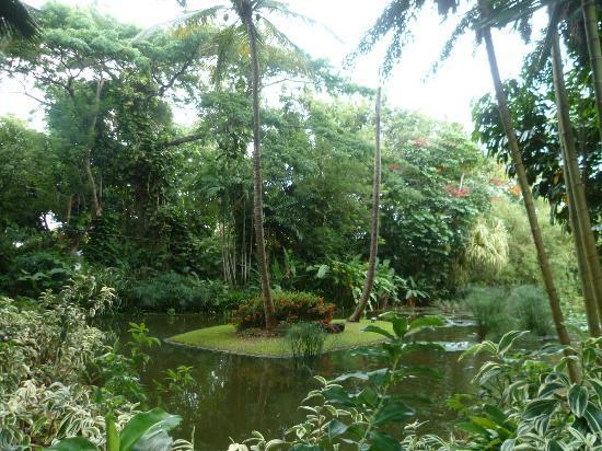 Deshaies jardin botanique karl gregoire 2012 picture of for Jardin botanique guadeloupe