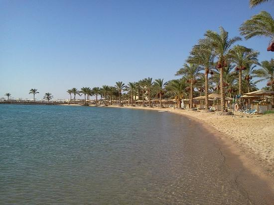 Movenpick Resort Hurghada: beach