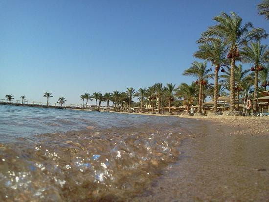 Continental Hotel Hurghada: crystal clear water