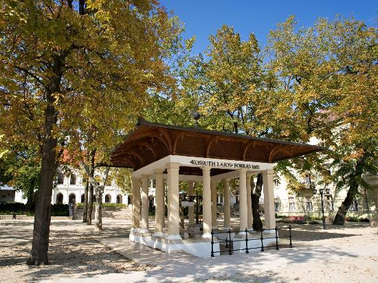 Balatonfured Hungary  City new picture : Balatonfured, Hungary: Kossuth Lajos sour water spring and pump room