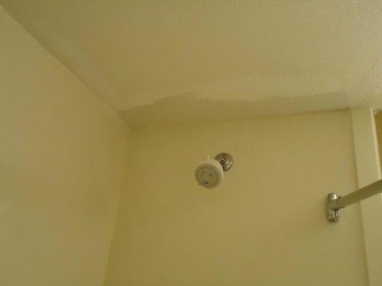Hudson River Hotel:                   Teto banheiro manchado