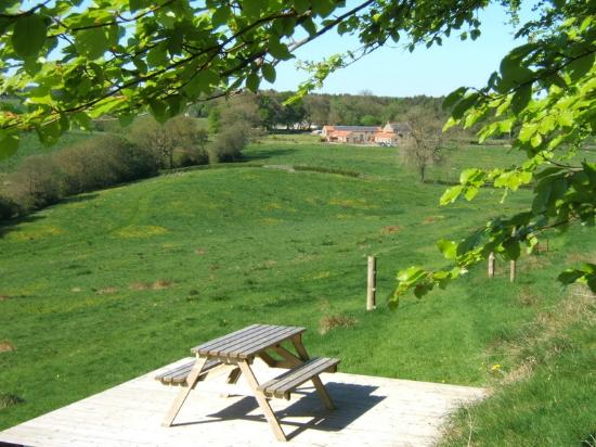 Rawcliffe House Farm Holiday Cottages and Studio Rooms: The view back to Rawcliffe Farm from the picnic table