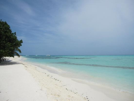 Meeru Island Resort & Spa: View