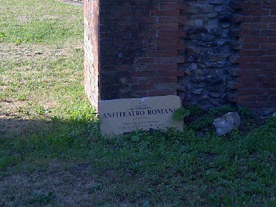 Anfiteatro Romano: L'anfiteatro