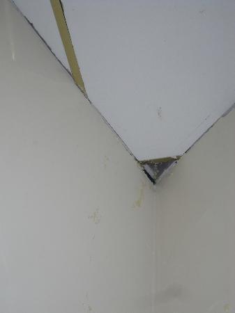 Ashton House Hostel: The ceiling