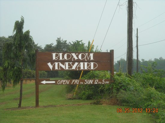 Bloxom Winery : Bloxom Vineyard, VA