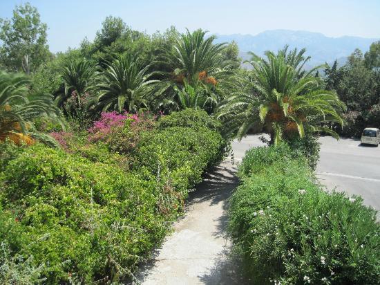 Caravia Beach Hotel: garden