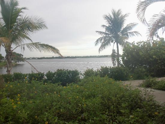 Club Med Sandpiper Bay: grounds