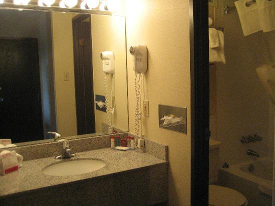 Ramada Plaza Albany: bathroom