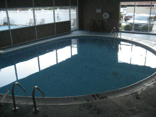 Ramada Plaza Albany: pool