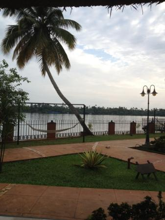 Vedic Village Resorts: The beautiful view from my room