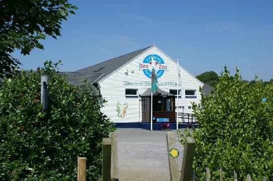 Anglesey Sea Zoo - Foto di Anglesey Sea Zoo Sw Mor Mon, Brynsiencyn ...