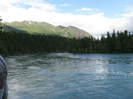 Kenai Princess Wilderness Lodge: The river below the lodge