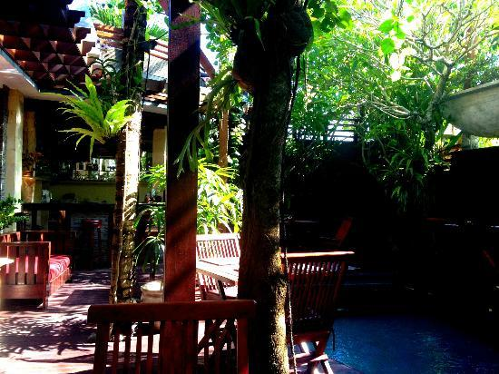 The Bali Dream Suite Villa: Pool at breakfast