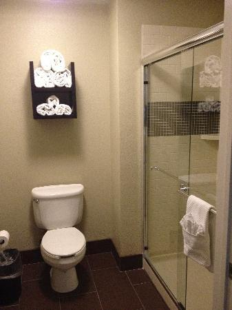 Staybridge Suites San Diego Rancho Bernardo Area: Bathroom in King room, newly remodeled