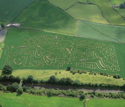 Кендал, UK: 2012 Equestrian Maze Design