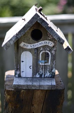 167 Water Bed and Breakfast: Bird B&B in garden!