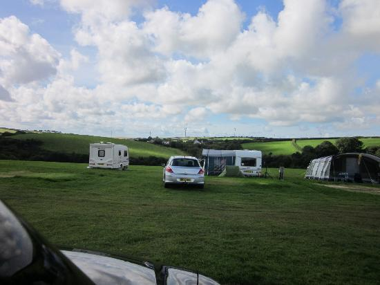 Stowford Farm Meadows: Rally Field