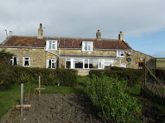 Plane Tree Cottage Farm : Farmhouse